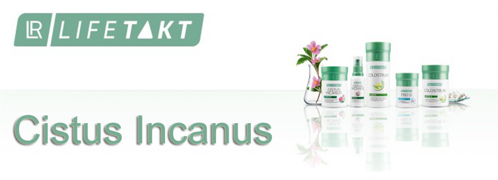 Cistus Incanus Kapsler C vitamin og zink – nogle af immunforsvarets byggeklodser